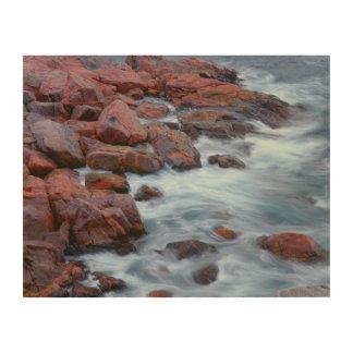 Rivage rocheux avec de l'eau, Canada Impression Sur Bois