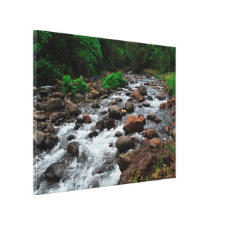 Rivière Bouliki de la Martinique Toile