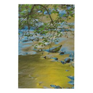 Rivière de South Fork Wilson, Orégon Impression Sur Bois