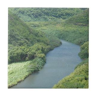 Rivière de Wailua - Kauai, Hawaï Petit Carreau Carré