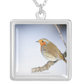 Robin était perché sur une branche en hiver pendentif carré
