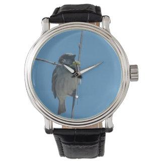 Robin - montre