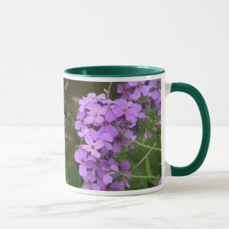 Rocket Wildflower de dame Mug