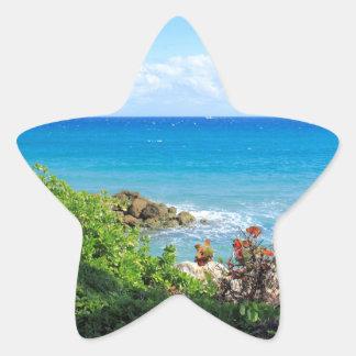 rocky-foliage-coast-deerfield-beach-4s6490 sticker étoile