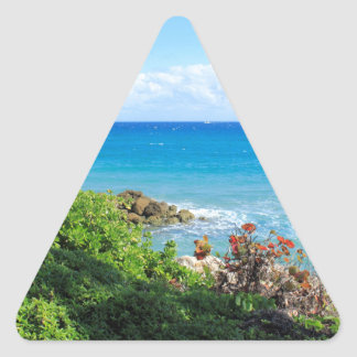 rocky-foliage-coast-deerfield-beach-4s6490 sticker triangulaire
