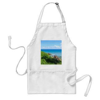 rocky-foliage-coast-deerfield-beach-4s6490 tablier
