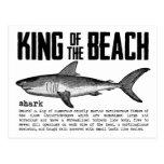 Roi de requin de la carte postale de plage