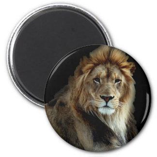 Roi fier du règne animal magnet rond 8 cm