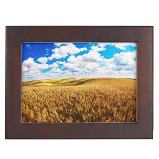 Rolling Hills de blé mûr Boîtes À Souvenirs