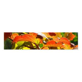 Ronds De Serviette Feuille d'automne