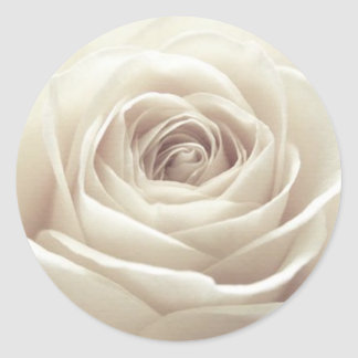 Rose assez blanc sticker rond