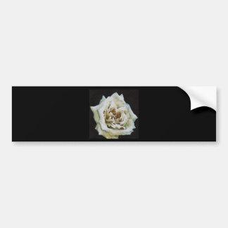 Rose blanc autocollant de voiture