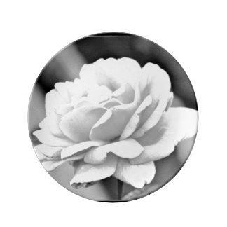 Rose blanc de plat noir de porcelaine assiettes en porcelaine