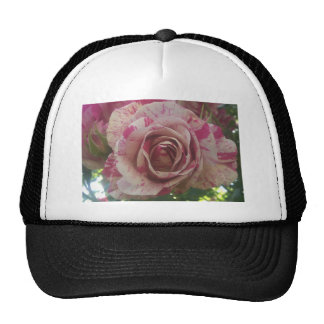 Rose blanc rouge casquette trucker