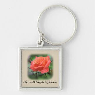 Rose de rose en pleine floraison porte-clés