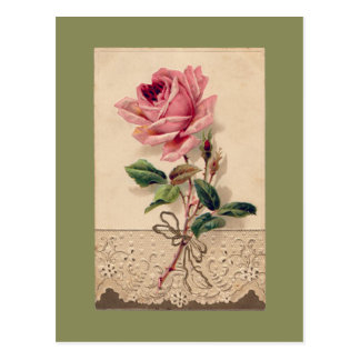 Rose de rose et cru Romance floral de dentelle Carte Postale