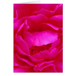 Rose heureux de rose du jour de mère I Cartes De Vœux