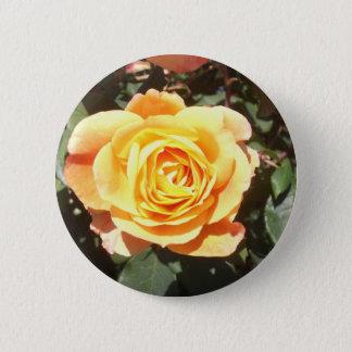 Rose jaune avec la teinte orange badges