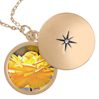 Rose jaune en collier chromatique