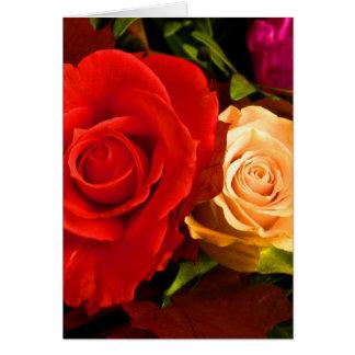 Rose jaune rouge cartes de vœux