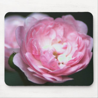 Rose Mousepad de rose ! Tapis De Souris