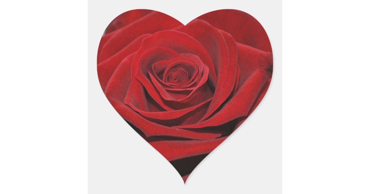 rose rouge autocollants en forme de coeur. Black Bedroom Furniture Sets. Home Design Ideas