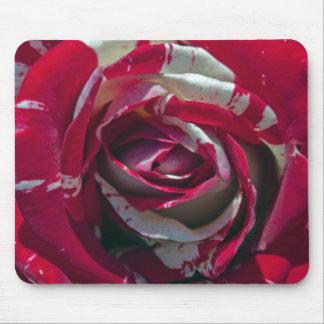 p tales rouges blancs tapis de souris et p tales rouges. Black Bedroom Furniture Sets. Home Design Ideas