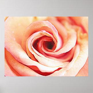 Rose sensible posters