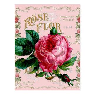 Rose vintage rose de l'anglais de SHABBYCHIC Carte Postale