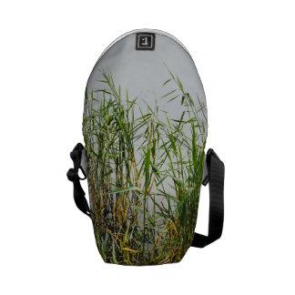 Roseau vert, arrière - plan gris de lac, nature sacoches