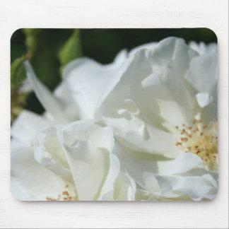 Roses blancs tapis de souris