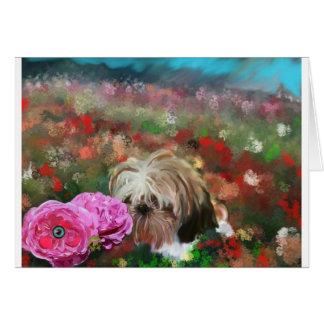 roses garden.jpg carte de vœux