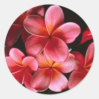 Roses indien assortissant les autocollants fleuris