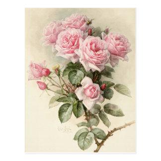 Roses romantiques victoriens vintages carte postale