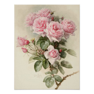 Roses romantiques victoriens vintages posters