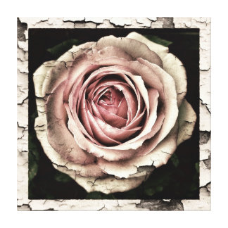 Roses roses grunges chics minables vintages toile