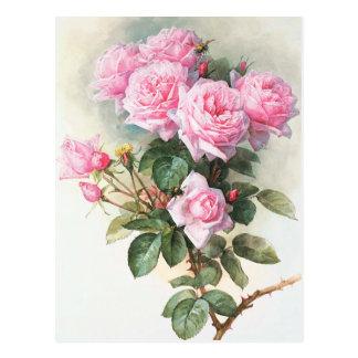 Roses roses vintages peignant la carte postale