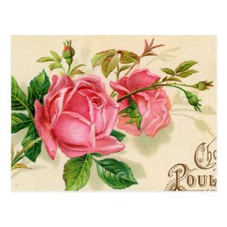 Roses rouges Girly de publicité française vintage Carte Postale