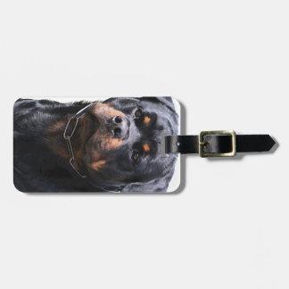 Rottweiler Étiquette Pour Bagages