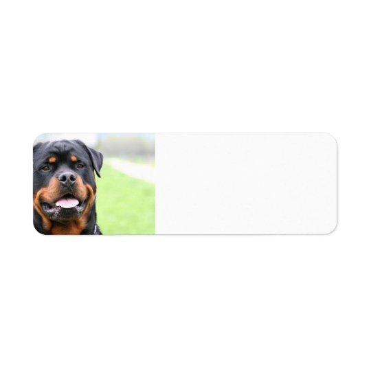 Rottweiler.png Étiquette D'adresse Retour