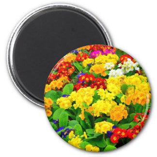 Rouge coloré, jaune, fleurs blanches de Purpe Magnet Rond 8 Cm