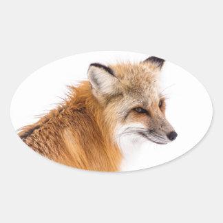rouge-renard sticker ovale