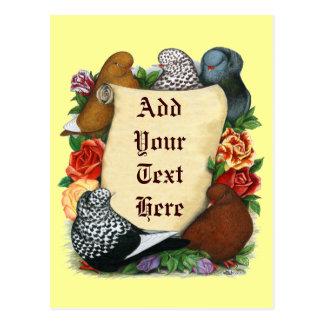 Rouleau de pigeon de vol carte postale