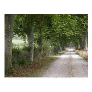 Route de campagne rurale de saleté près de la carte postale