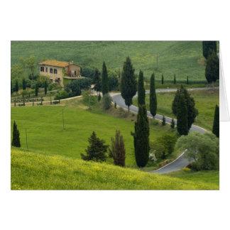 Route de Pienza à Montepulciano, 2 Carte De Vœux