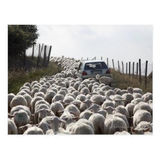 route de terres cultivables de la Toscane, voiture Carte Postale