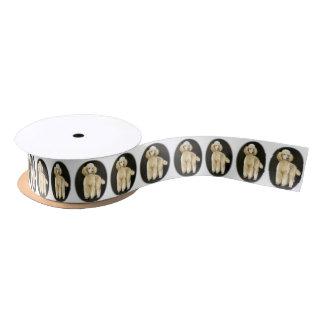 Ruban d'art de chien d'abricot de caniche standard ruban en satin