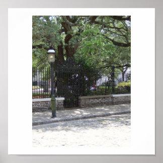 Rue pavée en cailloutis à Charleston, Sc Affiche