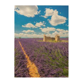 Ruine dans le domaine de lavande, France Impression Sur Bois