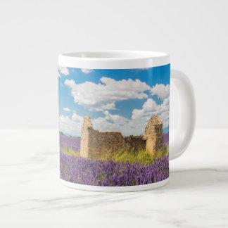 Ruine dans le domaine de lavande, France Mug